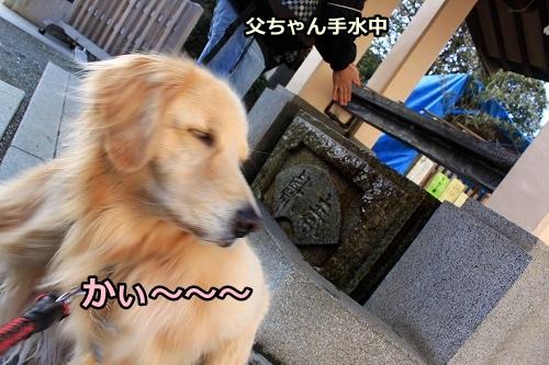 s-IMG_9068.jpg