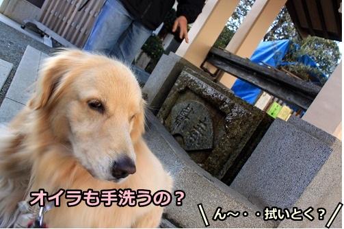 s-IMG_9069_20130105181859.jpg