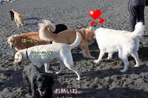 s-IMG_9160_20130109225149.jpg