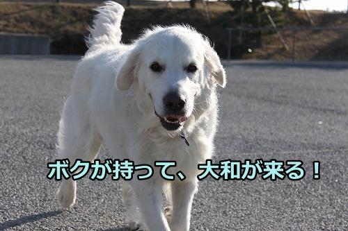 s-IMG_9450.jpg