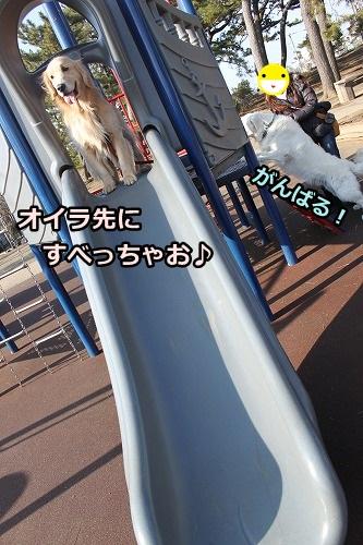 s-IMG_9480_20130128215906.jpg