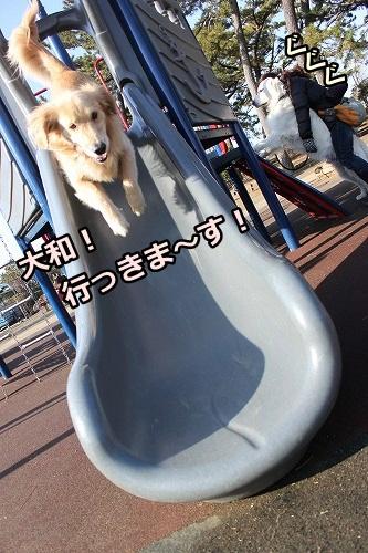 s-IMG_9481_20130128215907.jpg