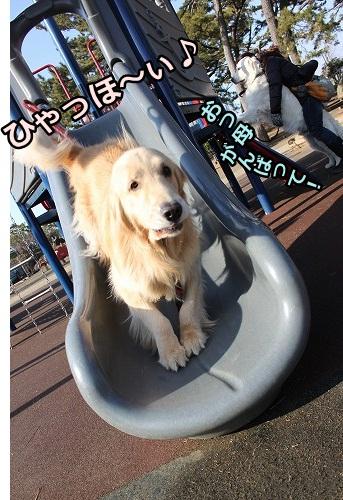 s-IMG_9482_20130128215908.jpg