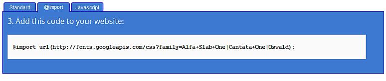 google_webfont_use.png