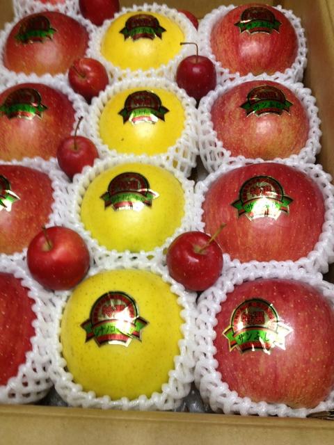 こんなリンゴ食べた事ないよぉ~~!!