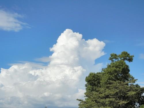 今日の空&雲