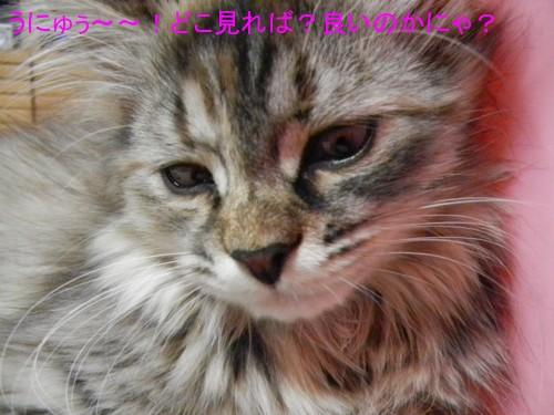 桜子だよぉ~~~ん。