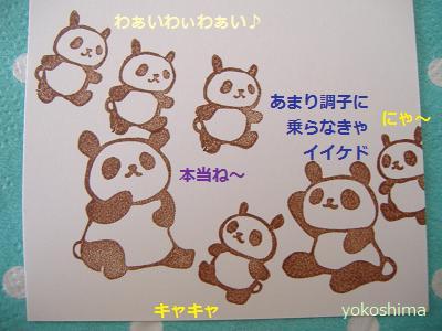 パンダが4