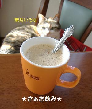 紅茶カプチーノ2