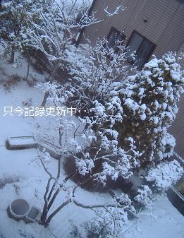 2012 3雪