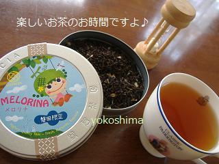 2012 お茶ネコ