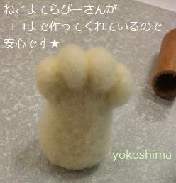羊毛ニクキュウ1
