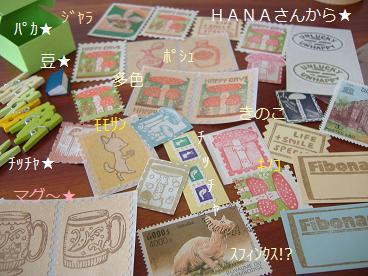 HANAレター4