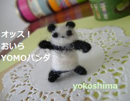 yomoパンダ1