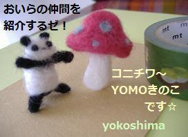 yomoパンダ2