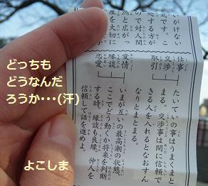 2013 おみくじ2