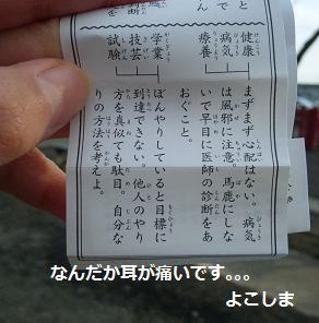 2013 おみくじ3