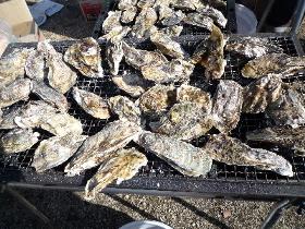牡蠣(1)(1)