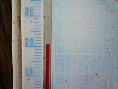 P1120564(1).jpg