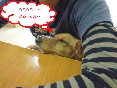 DSC_0292_R.jpg