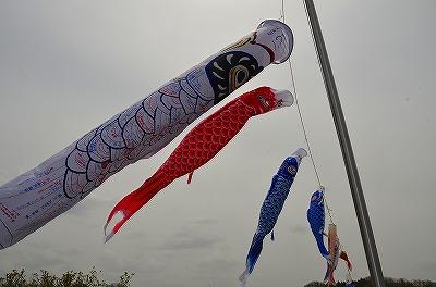 haruyamaDSC_0242 (15)
