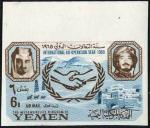 イエメン王党派・国際協力年