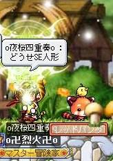 Maple100408_224710.jpg