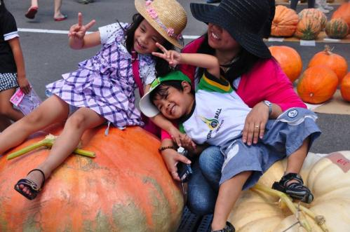 6かぼちゃ11.09.11