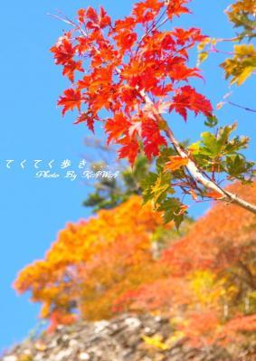 4瓶ヶ森11.10.09