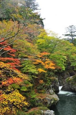 5小田深山11.10.23