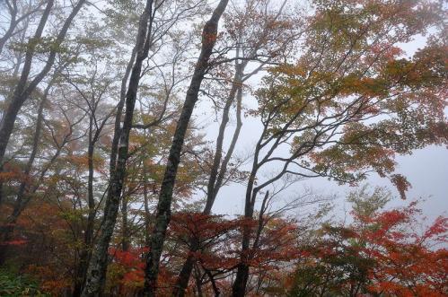 3大川11.10.23