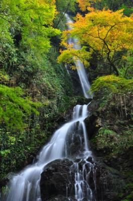 7白滝11.11.27