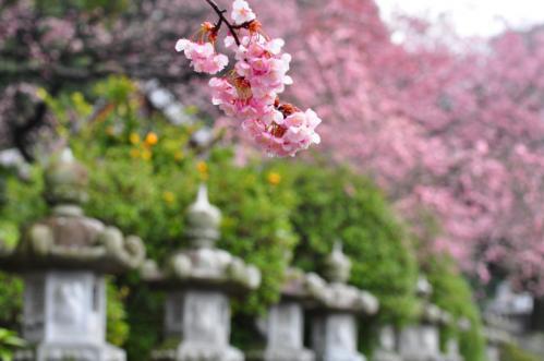 1三島神社12.03.17