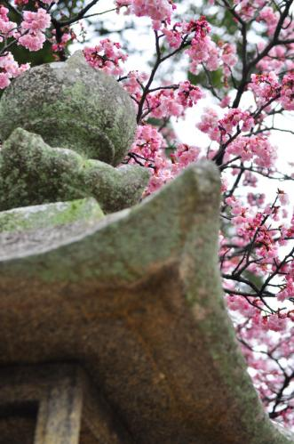 5三島神社12.03.17
