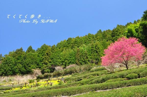 1仁淀川12.04.01
