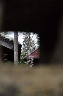 5法蓮寺12.04.14