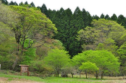 6竜神平12.05.13