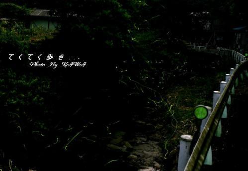 1小野川12.05.31