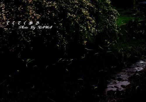 2小野川12.05.31