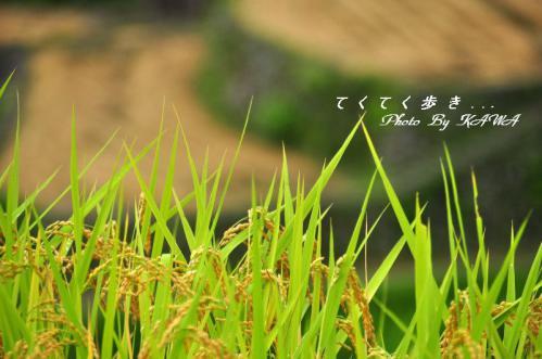 6泉谷12.09.16
