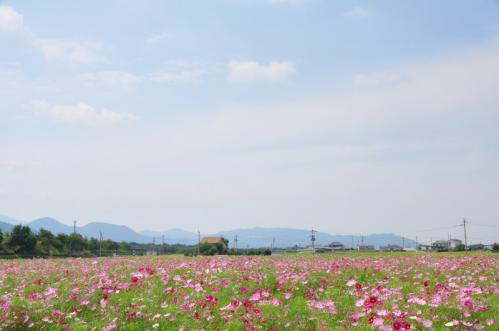 2見奈良12.09.20