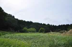 1竜神平1 12.09.20