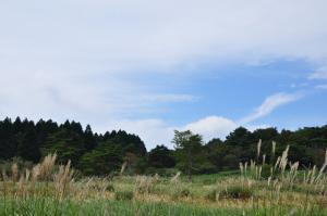 2竜神平2 12.09.20