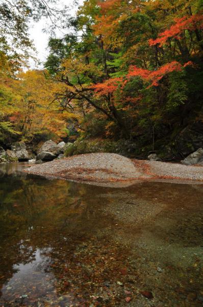 6小田深山12.11.03