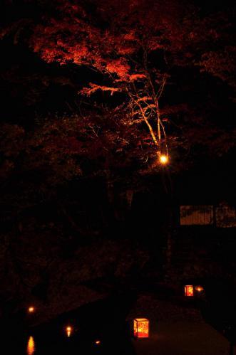 1小田深山夜12.11.03