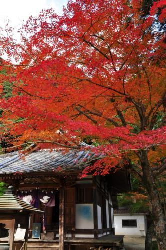 1西山興隆寺2012.11