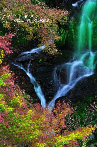 6白滝12.11.25