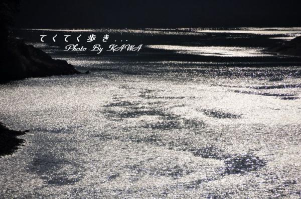 冬の四万十川12.12.23