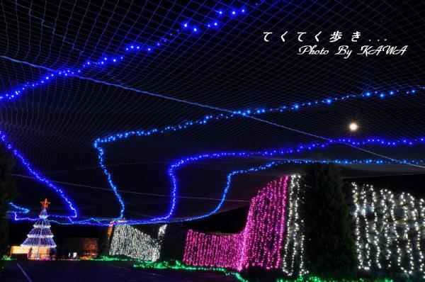 3まんのう公園12.12.27
