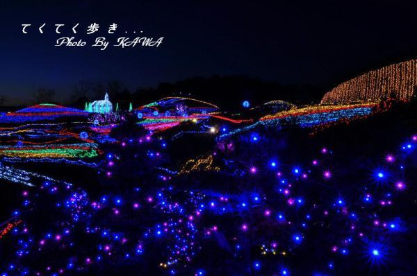 4まんのう公園12.12.27